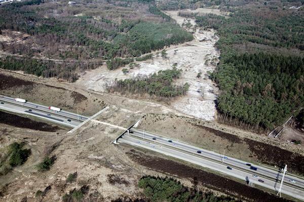 Aanleg ecoduct