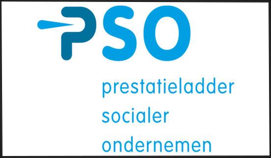 PSO_BM_