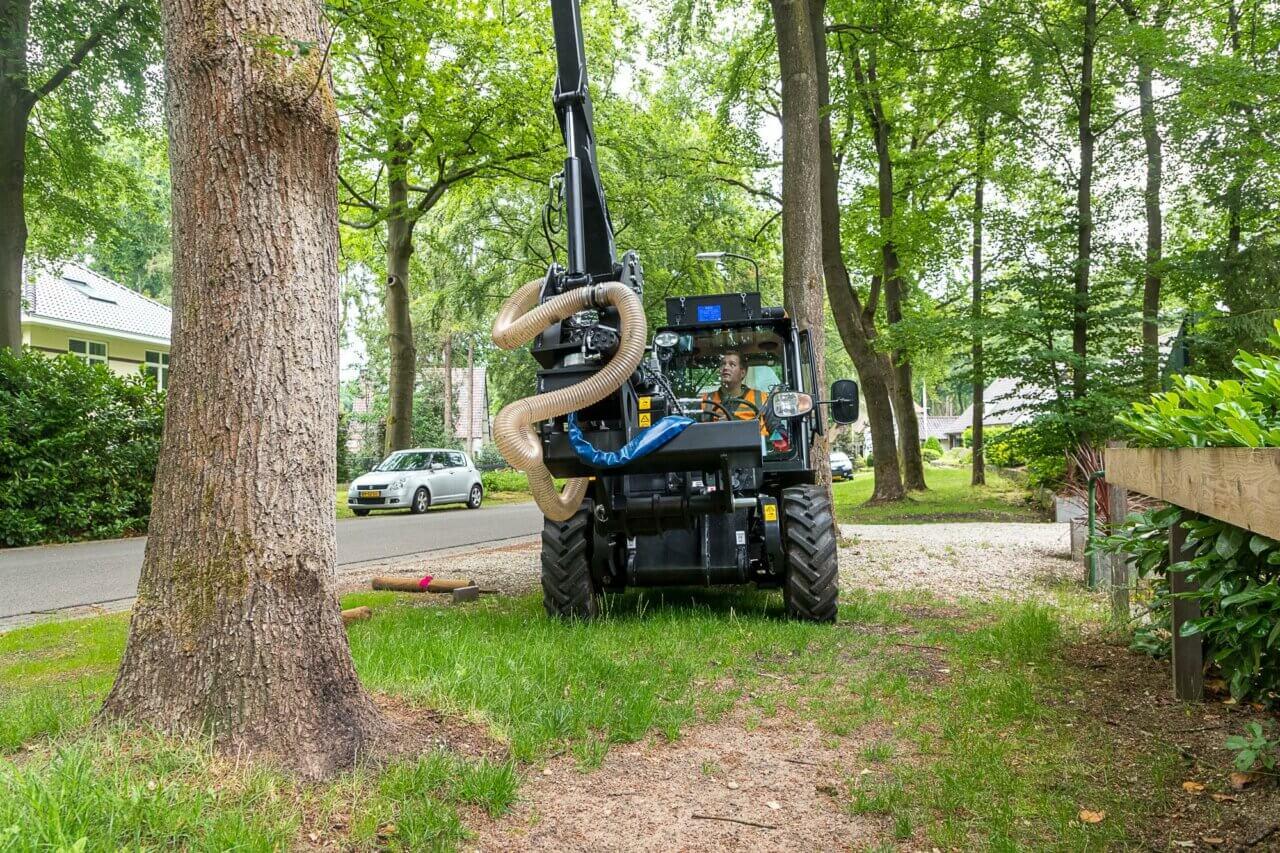 eijkelboom-apeldoorn-boom-Gemeente-Apeldoorn-eikenprocessierups-2019-1-2000x1333