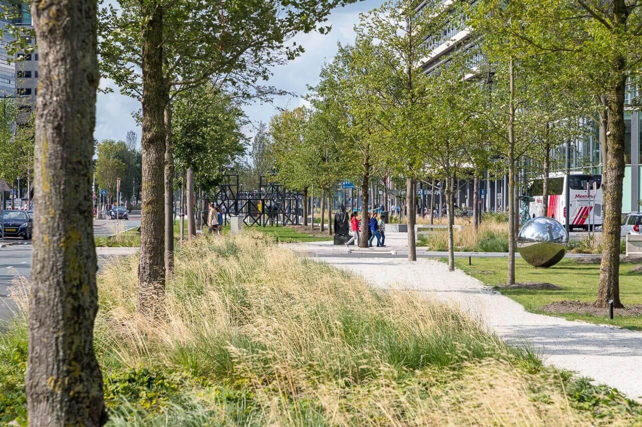 eijkelboom-utrecht-groen-en-recreatie-Utrecht-Croeslaan-2018-1-2000x1333